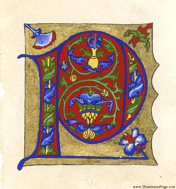 medieval illuminated letters coloring pages - illumination samples
